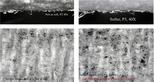 Figure 6.  Small Difference Evaluation 1:   Here we see in the view of zed direction fiber a slight improvement in the softer sheet. Although the crepe count is almost the same in both sheets, the right picture shows a difference in structure relating to coarseness and better drape.