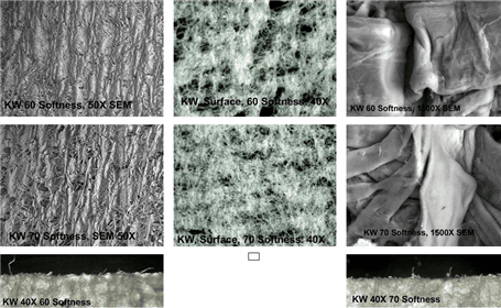 Figure 7. See the Small Difference Evaluation  2 above for analysis details of these photographs