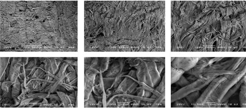 Figure 4.  SEM photographs of the top surface of a sheet with magnifications ranging from 50X to 1500X.  Following in Phase 2 you will see the very significant findings of this high magnification study