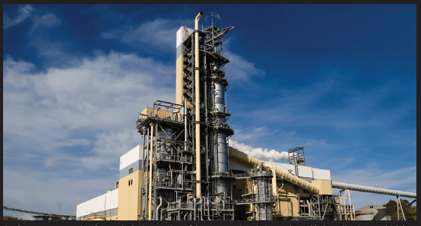 Business strategy: a key feature is the integration of the company's pulp into value-added, quality tissue, which has meant investments worth $100m at its Calhoun, Tennessee-based facility
