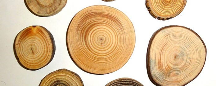 Efficient wood supply and logistics